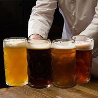 pivo010